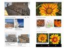 Microsoft запускает визуальный поиск на основе искусственного интеллекта - Bing Visual Search